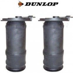 2 Air Spring Rear P38 (Pair) Dunlop RKB101460 x 2